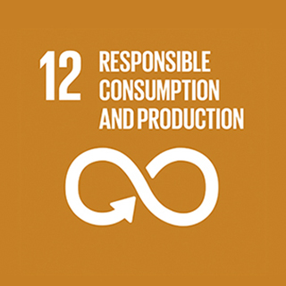 12. Responsible, Consumption and Production