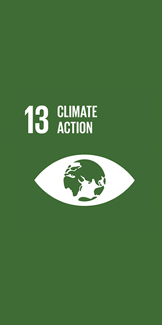 13. Climate Action 320 x 640