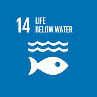 14. Life Below Water 320 x 320