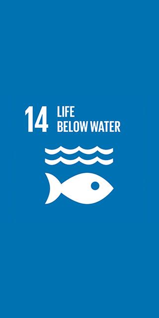 14. Life Below Water 320 x 640
